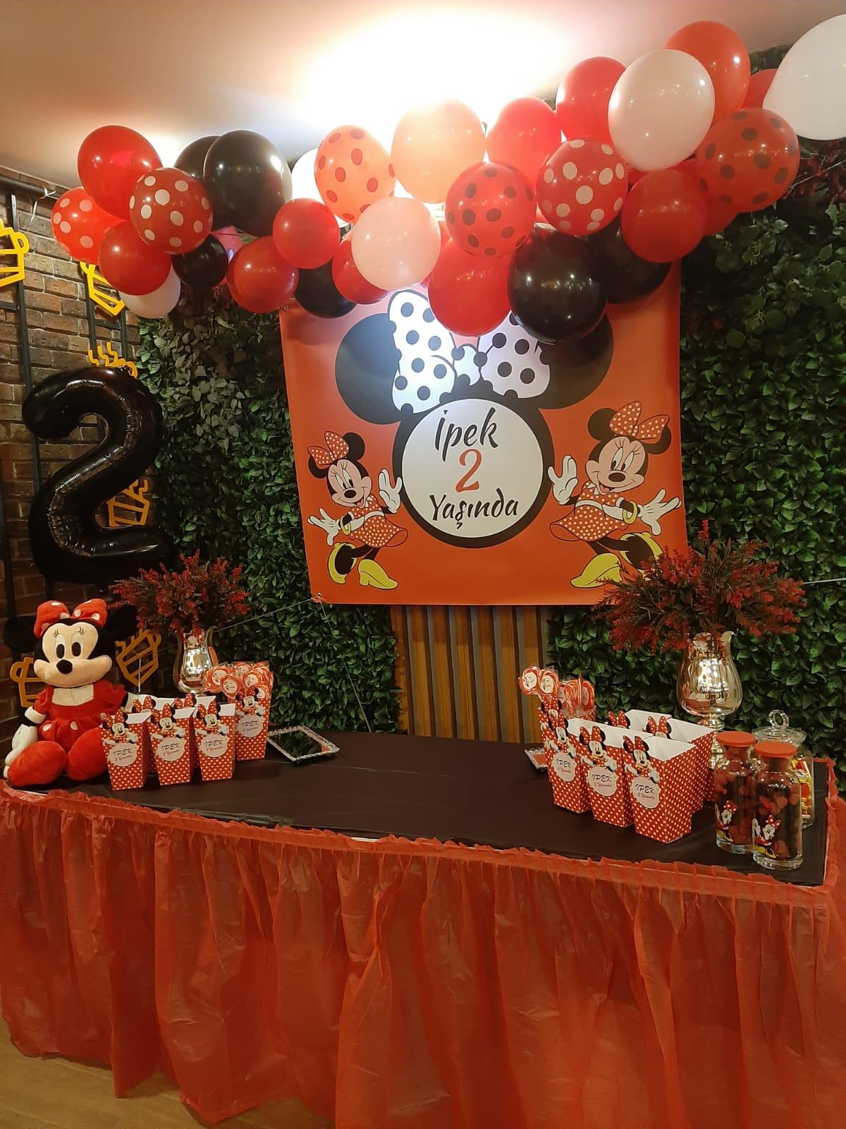 mikey mouse temalı doğum günü